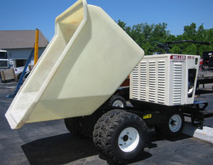 CEMENT – BUGGY 16 cf