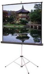 OVERHEAD PROJECTION SCREEN